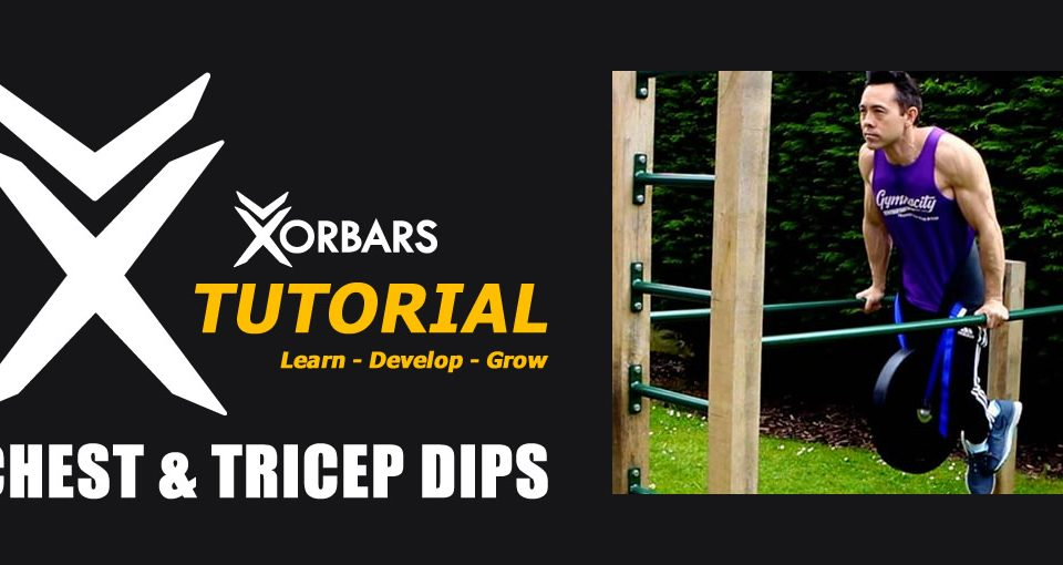 Chest & Tricep Dips on Parallel Bars